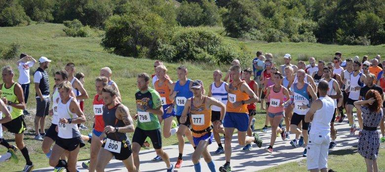31e Hyundai Halve Marathon