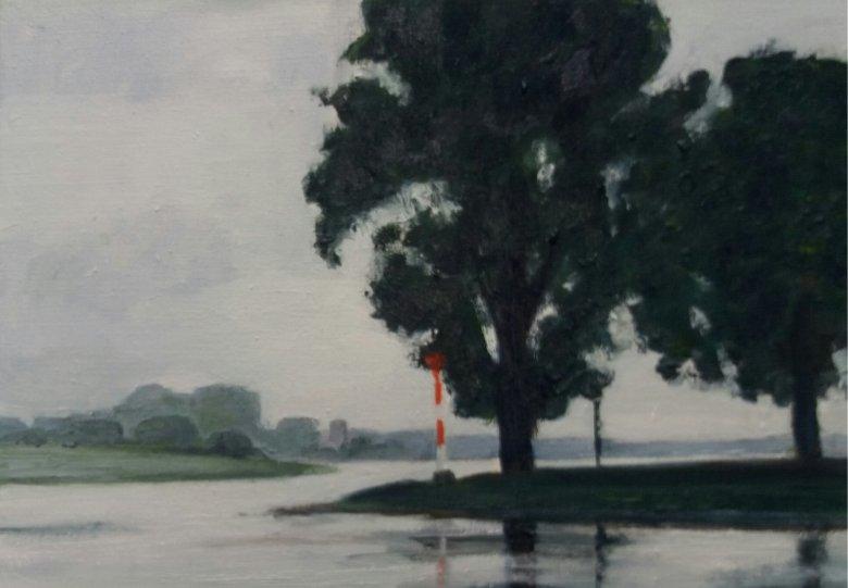 Dynamische landschappen: schilderkunst van Karin Boers