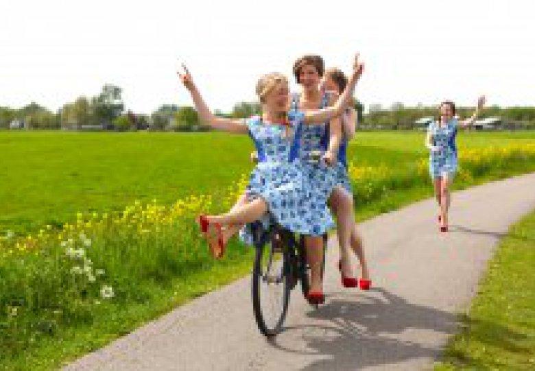 De Meisjes met de Wijsjes, Pieter Verelst en Kees Vriend