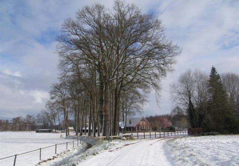 Winterwandeltocht, VVV Dinxperlo
