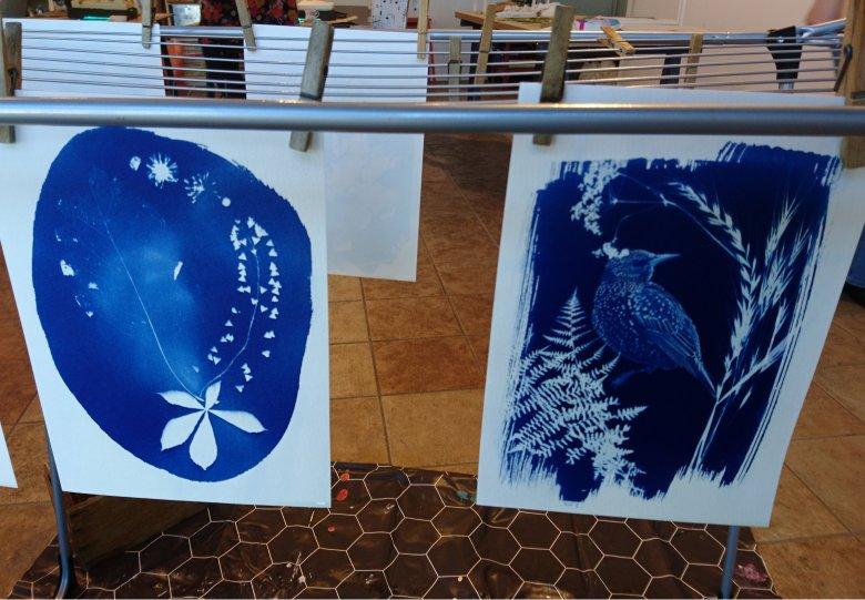 Workshop Botanische Blauwdruk