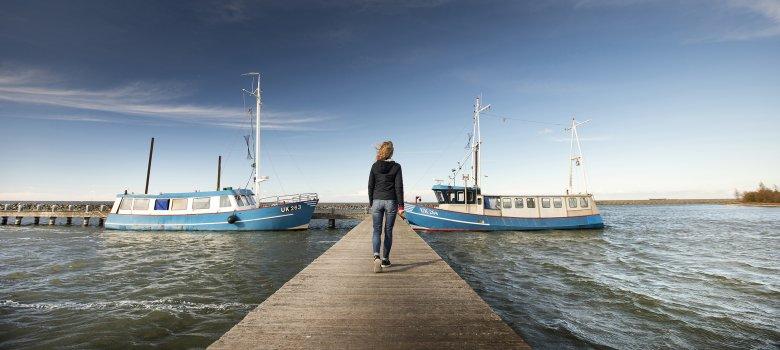 Flevoland; de paden op, de lanen in