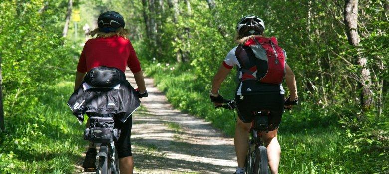 Mountainbikeroute Kotterbos