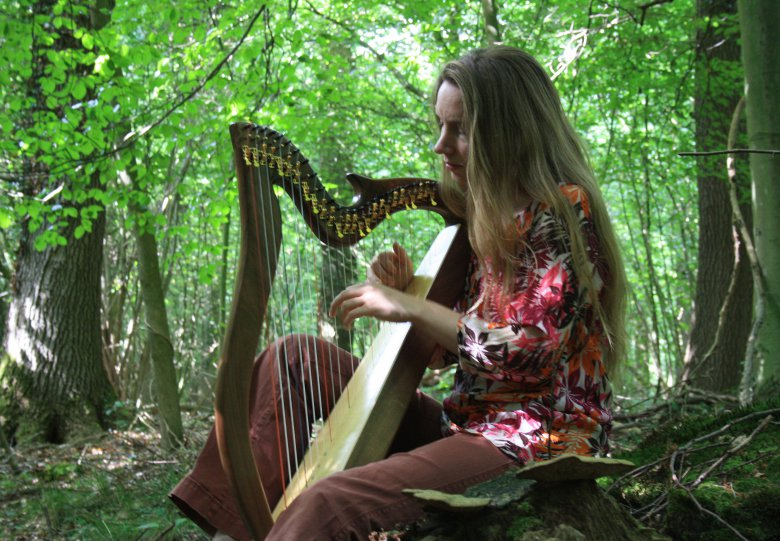 Ontspanningsconcert met harp