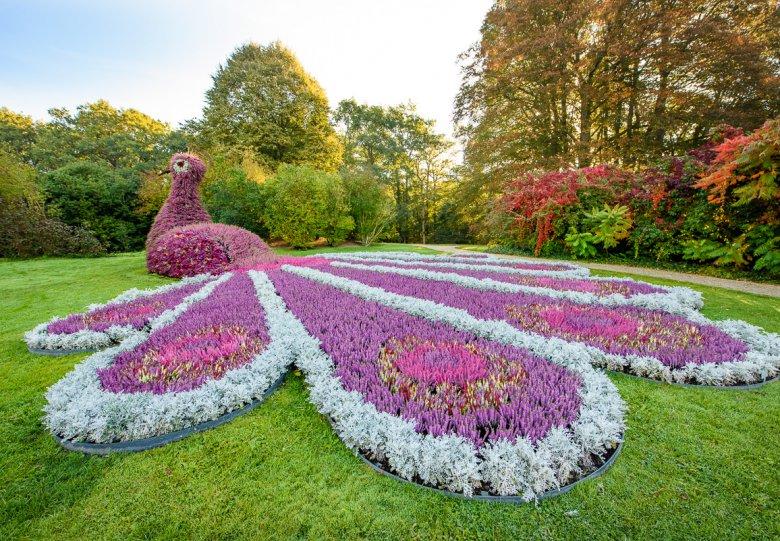 De herfst ontluikt in Kasteeltuinen Arcen tijdens herfstshow 'Herfstig'!