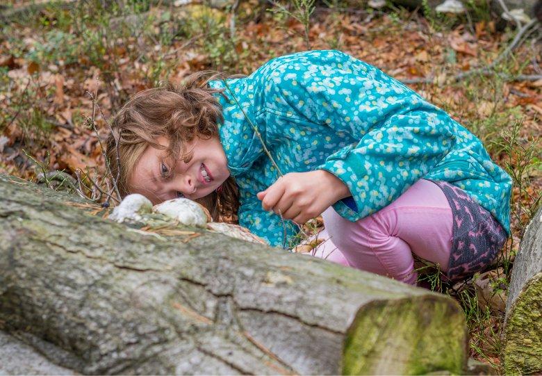 Bezig in het bos op landgoed Waardenburg en Neerijnen