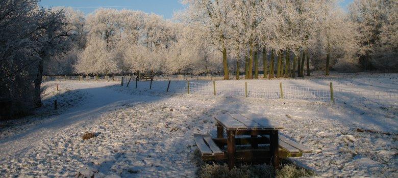 Wintersferen Waardenburg