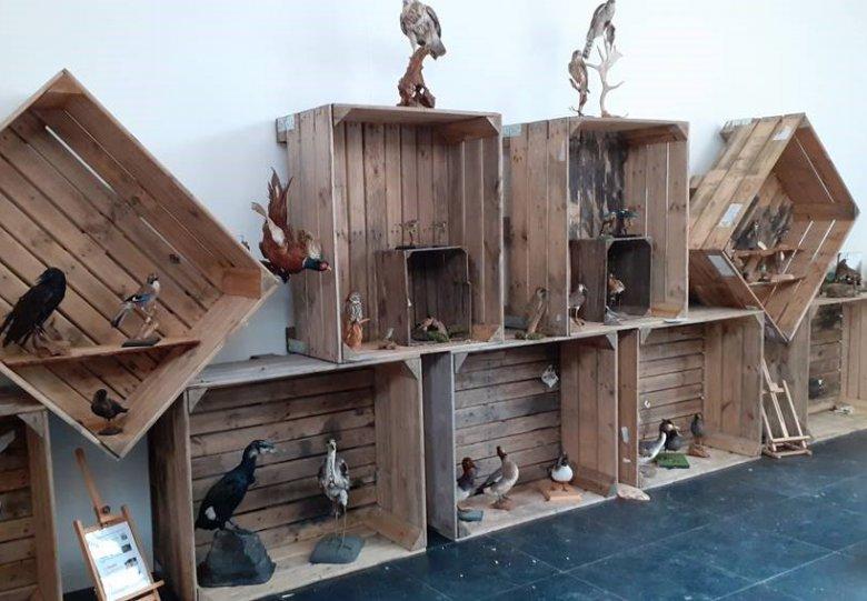 Expositie 'Vogels in De Schammer'