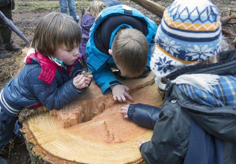 Kinderwandeling op landgoed Warnsborn