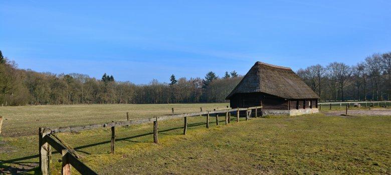 Herfst en historie in natuurgebied de Zandhegge