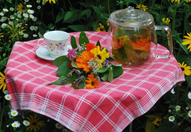Costerustuin High Tea: proef de planten