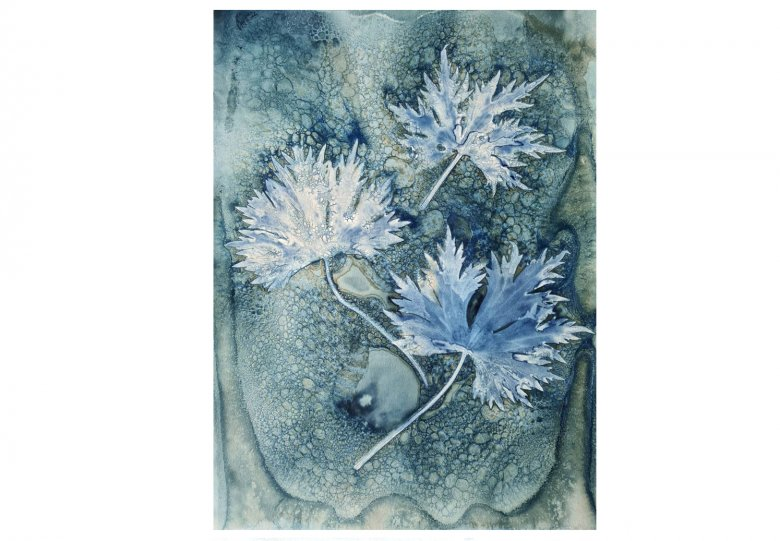 Workshop Botanische Blauwdruk II