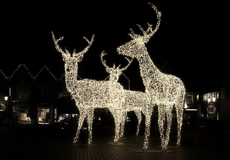 Het WinterLicht schijnt in december!