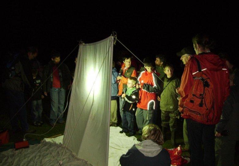 Nachtvlinderexcursie op de Holterberg