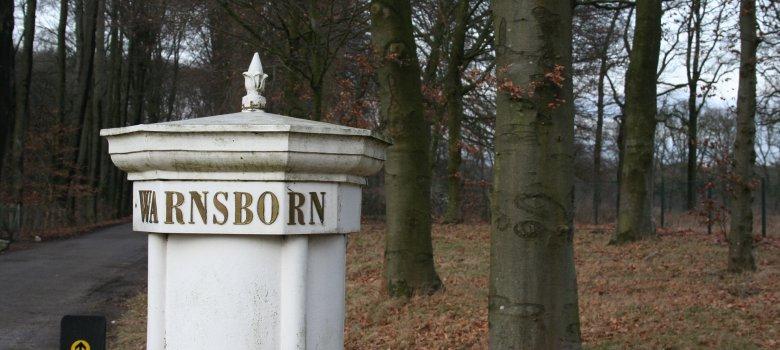 Frisse wandeling Westerheide en Warnsborn
