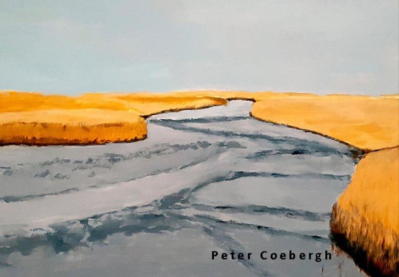 Opening expositie Peter Coebergh