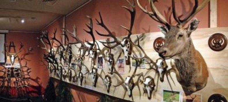 Jacht- en Wildbeheertentoonstelling