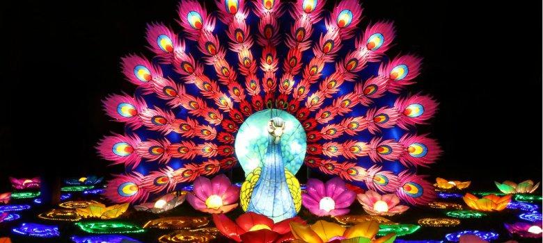China Light Festival Ouwehands Dierenpark